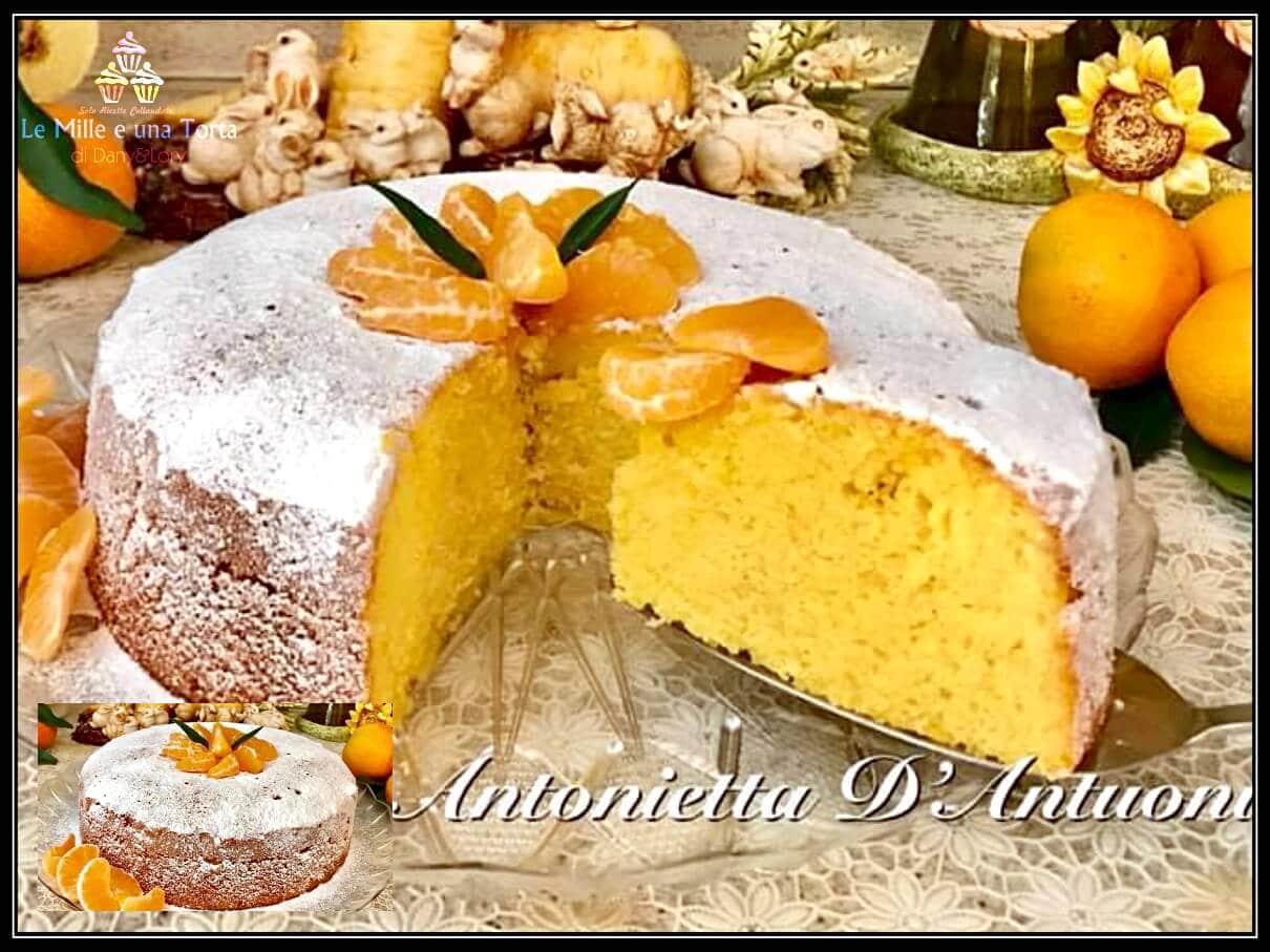 PAN-DI-MANDARINO-ricetta-Bimby