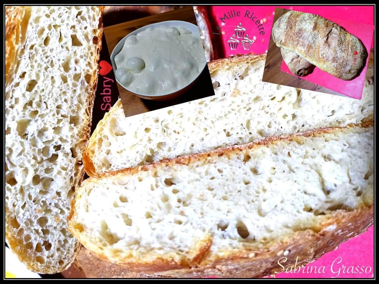 pane con lievito madre,pane fatto in casa con lievito madre,ricetta pane con lievito madre,Pane lievito madre,Pane con impasto molle